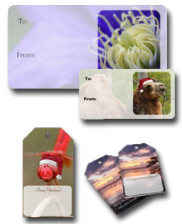 Nature Themed Gift Tags