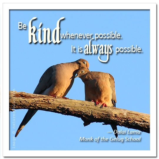 Dalai Lama:  Be Kind Whenever Possible . . .