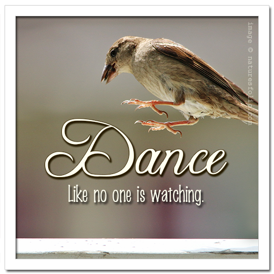 Dance Like No One is Watching Quote