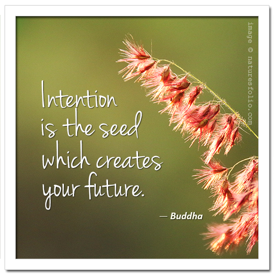 Buddha:  Intention is the seed which creates your future.