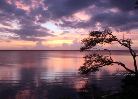 Life is not measured by the number of breaths you take, but by the moments which take your breath away. Such a moment is this purple sunset on Hutchinson Island, Florida on the river side across from the House of Refuge.