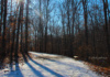 Trees Cast Long Shadows At The Ma And Pa Trail In Bel Air, Maryland, Under The Winter Sunlight.