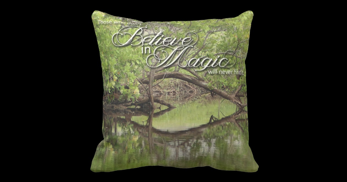 natures_folio_daily_inspirations_gift_ideas_pillow-redd651e74cd44147bdc9b315fc2bf33f_6s39g_8byvr_630