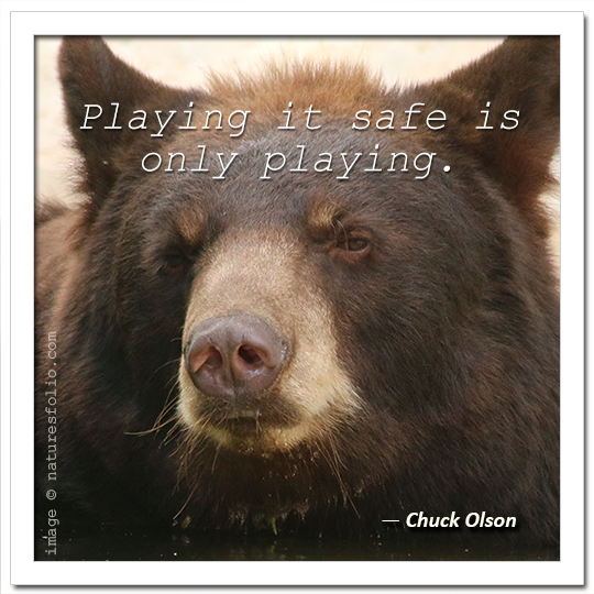 Playing it safe is only playing