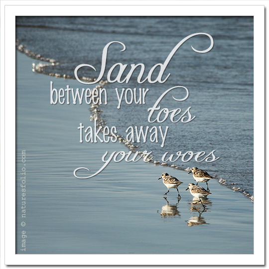 Sand Between Your Toes . . .