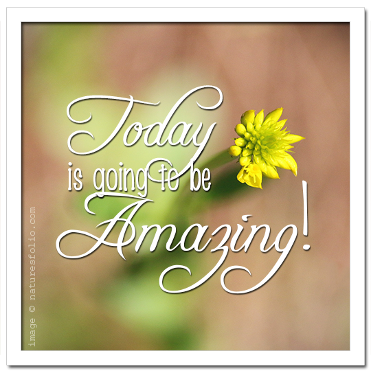 Repeat After Me:  Today is Going to be Amazing!